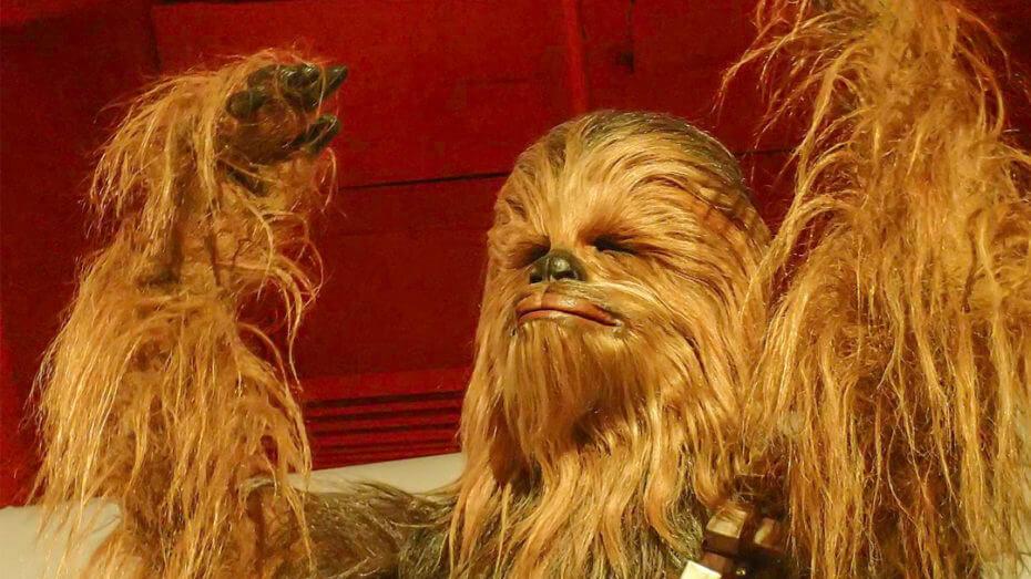 Chewbacca & Meditation